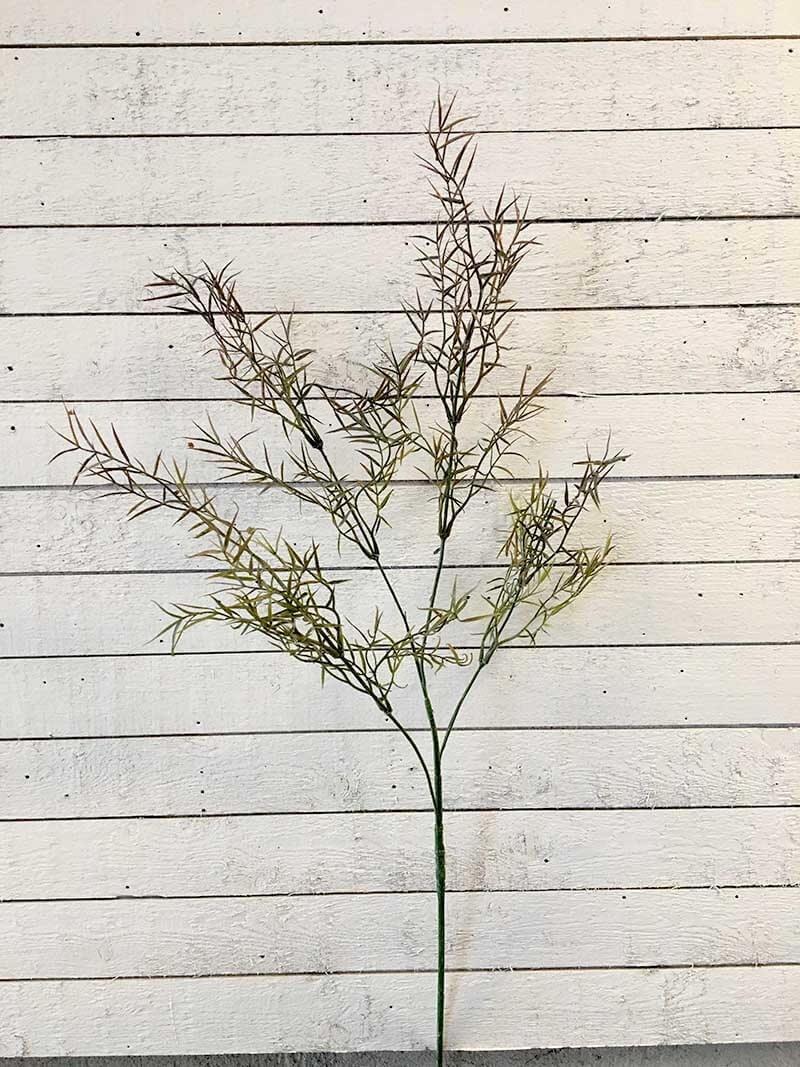 Asparagus, konstgjord blomma