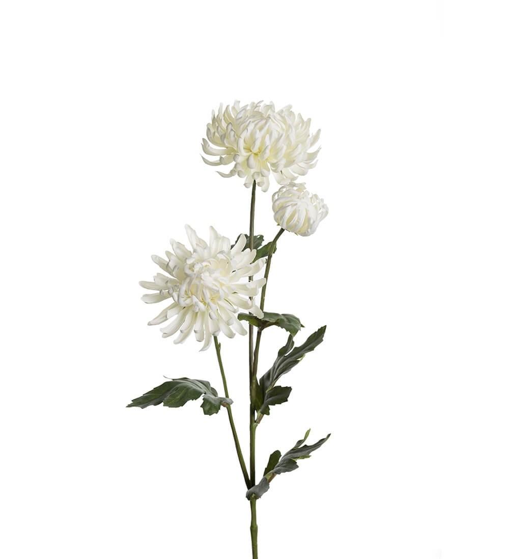 Chrysanthemum, vit, konstgjord blomma