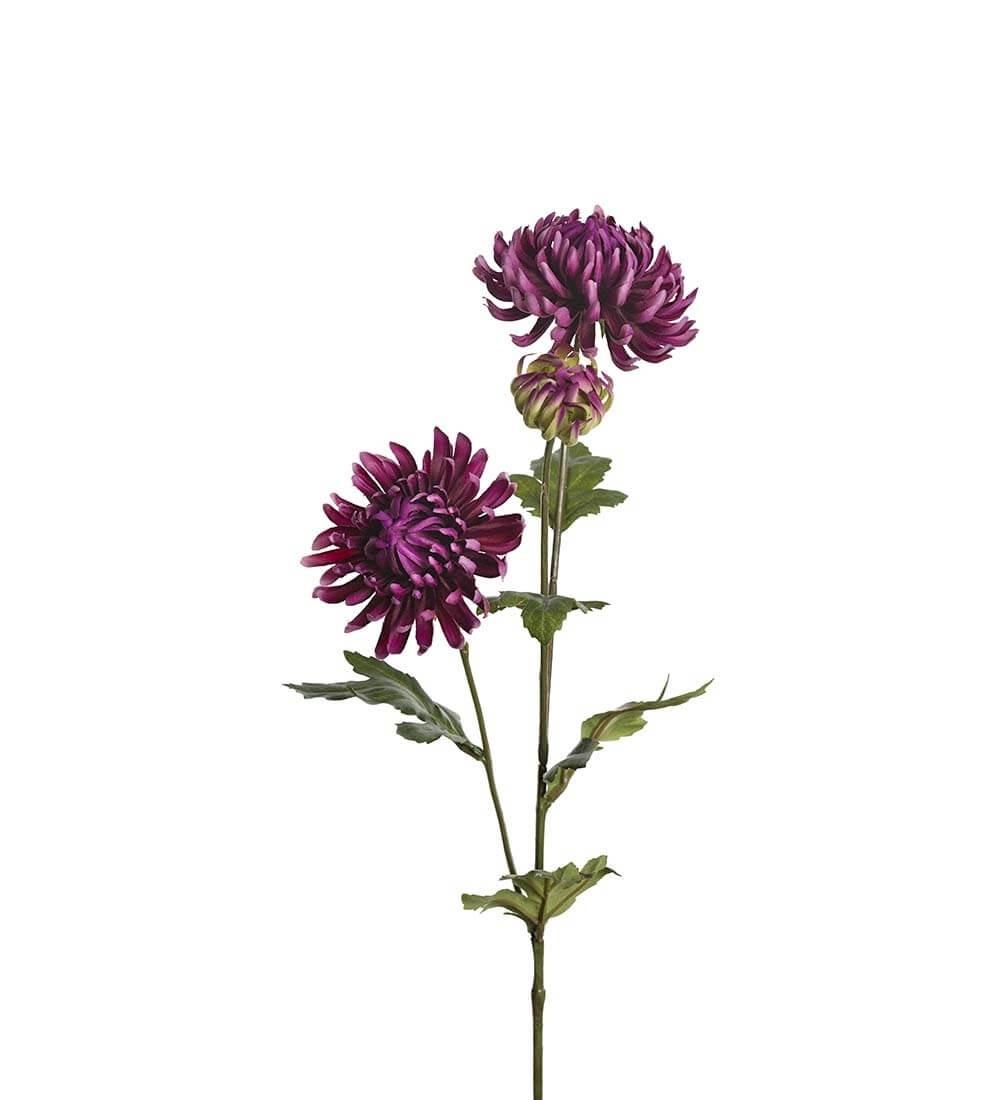 Chrysanthemum, lila, konstgjord blomma