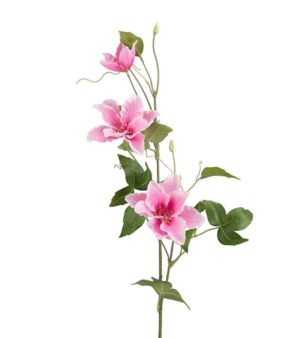 Clematis, rosa, konstgjord blomma