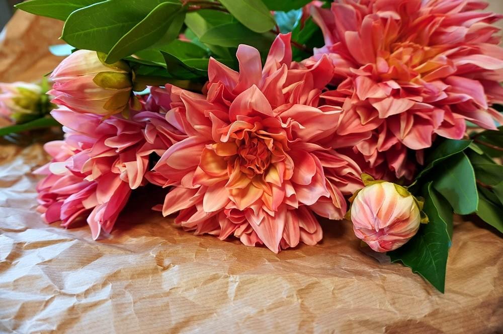 Dahlia, rosa, konstgjord blomma