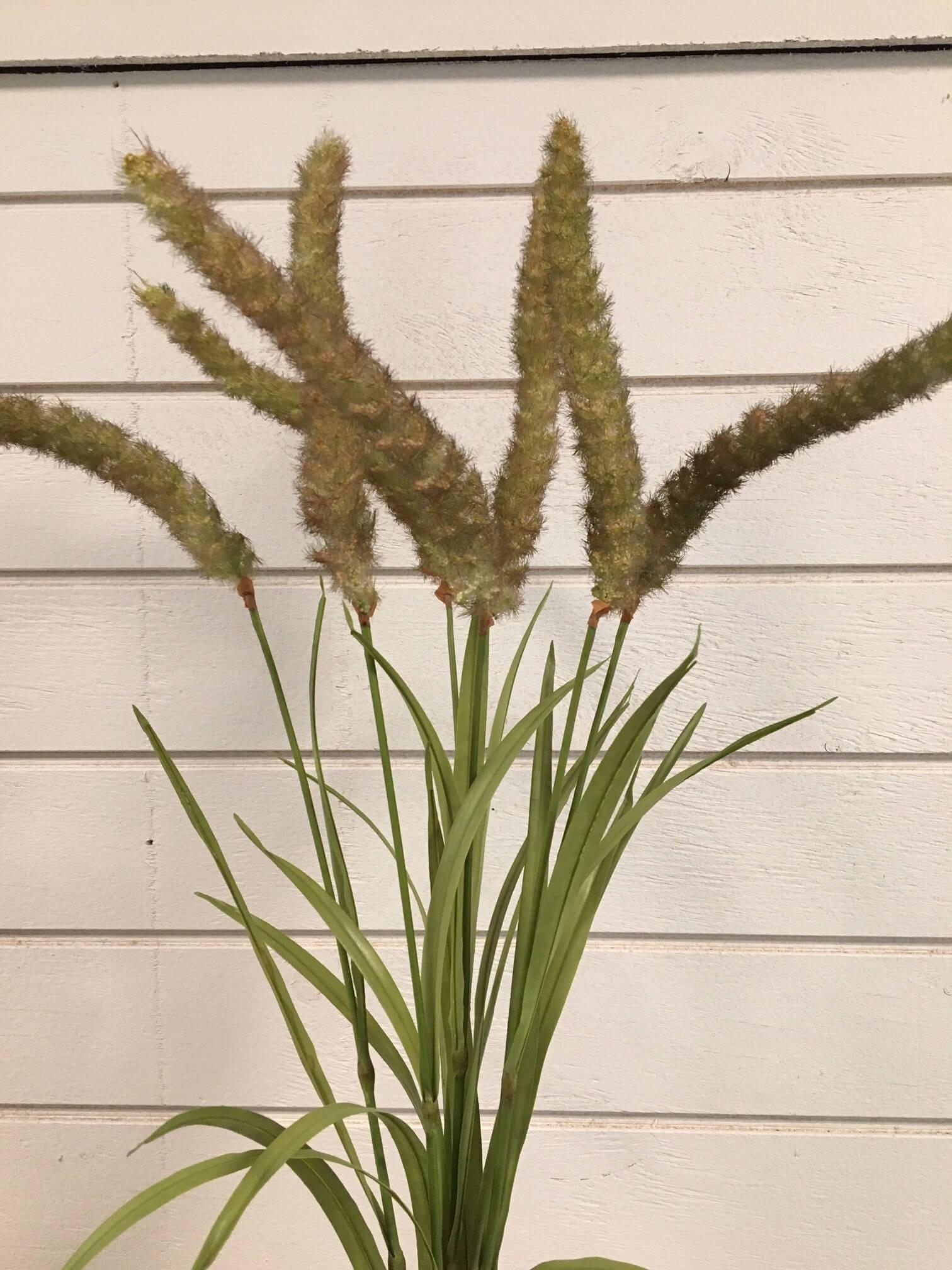 Gräs, mörkt ax, konstgjord växt