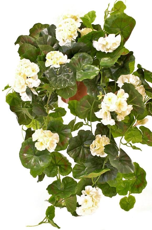 Hängpelargon, vit, konstgjord krukväxt, hängväxt