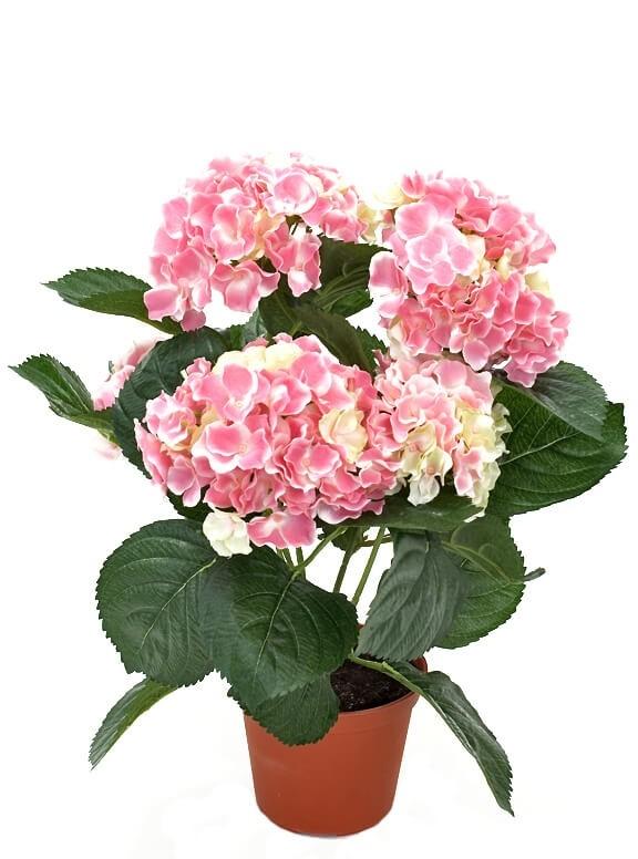 Hortensia, ljus rosa, konstgjord krukväxt