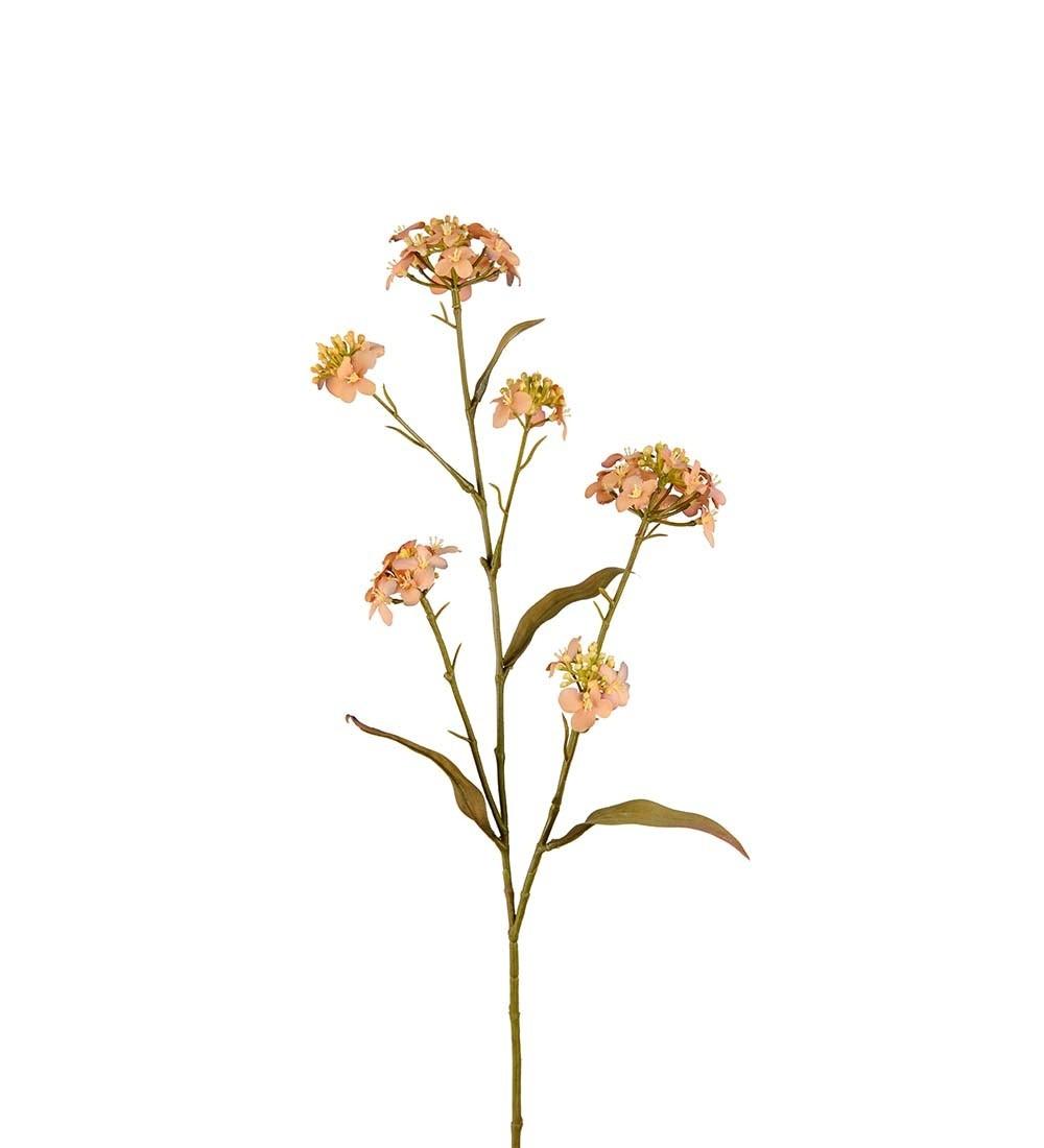 Blomster Iberis, konstgjord torkad blomma