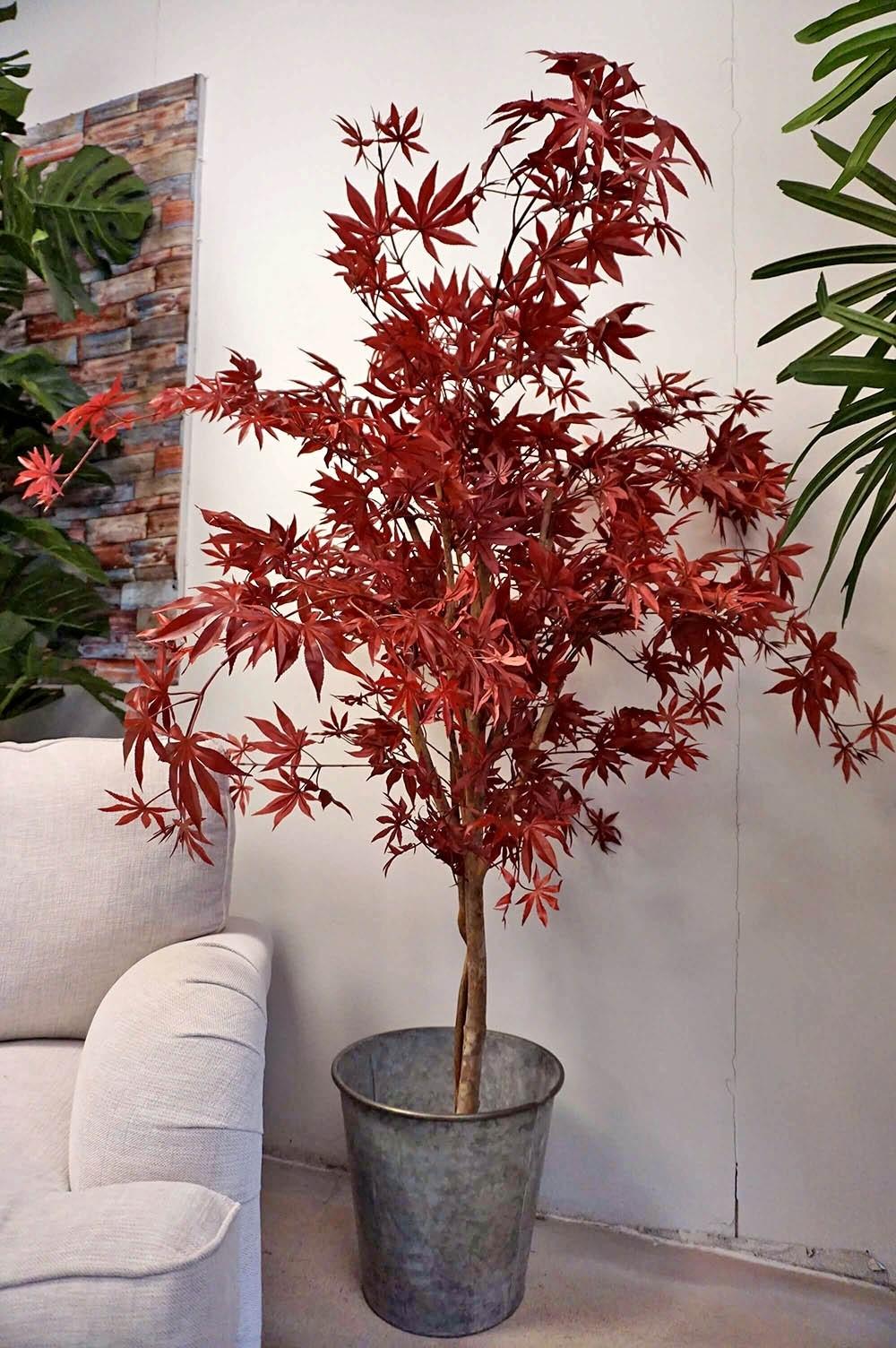 Japansk lönn, konstgjort träd