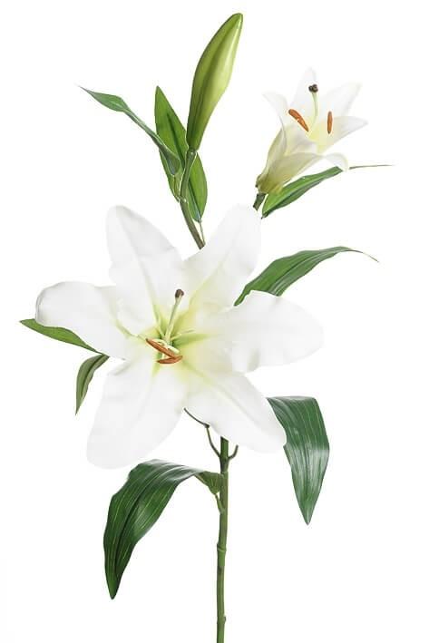 Lilja, vit, konstgjord blomma