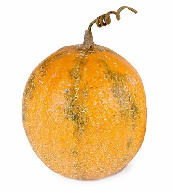 Melon, gul, konstgjord