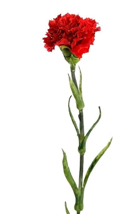Nejlika, röd, konstgjord blomma