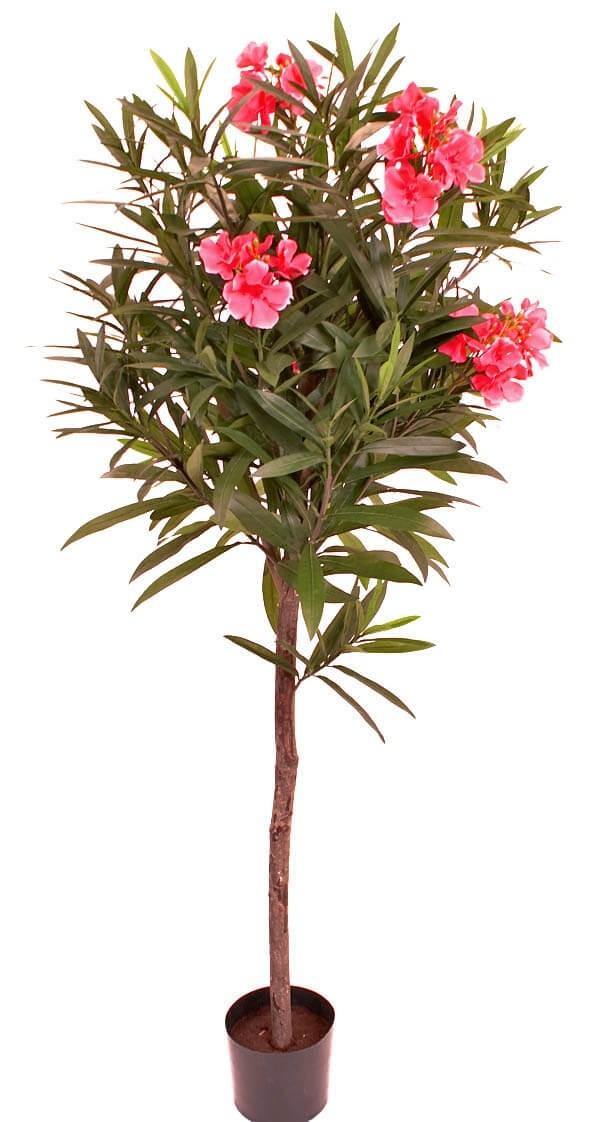 Oleander, konstgjord