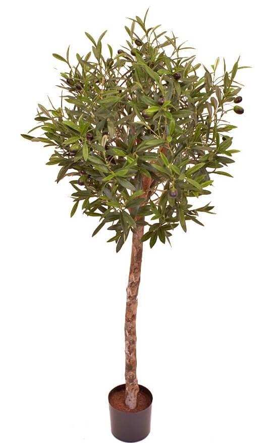 Olivträd, konstgjort
