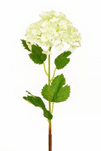 Olvon, Viburnum konstgjord blomma