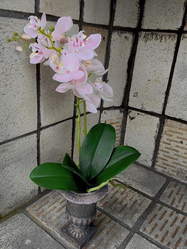 Orkidé i pokalkruka, konstgjord