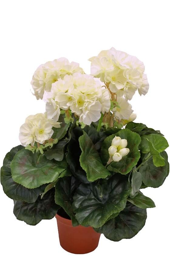 Pelargonia, vit, konstgjord blomma