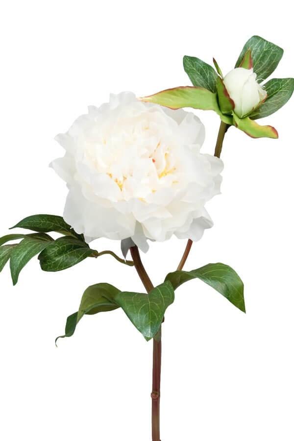 Pion med knopp, vit, konstgjord blomma