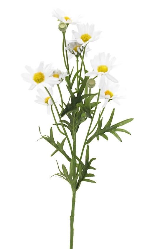Prästkrage, konstgjord blomma