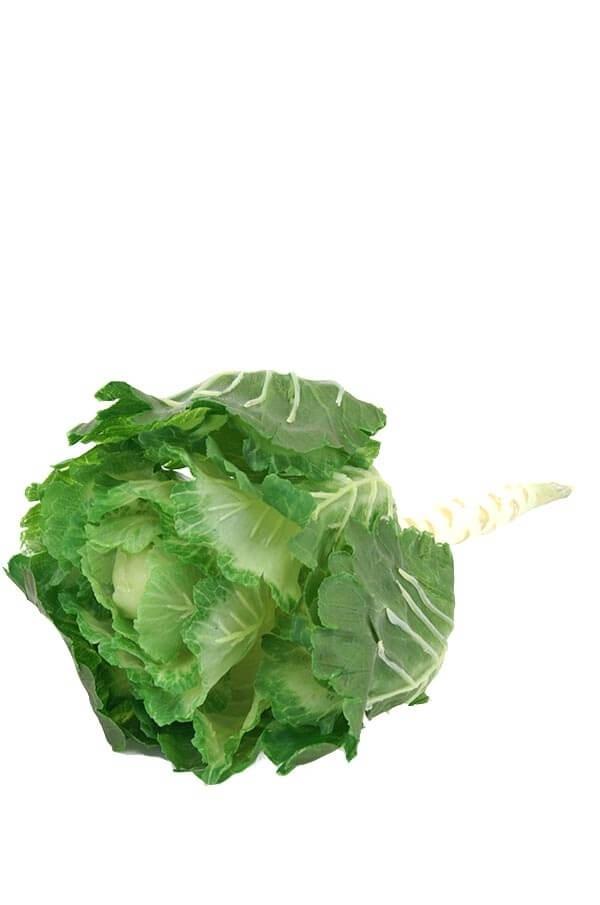 Prydnads kål, grön vit, konstgjord