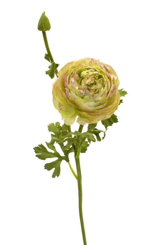 Ranunkel, lime lila, konstgjord blomma