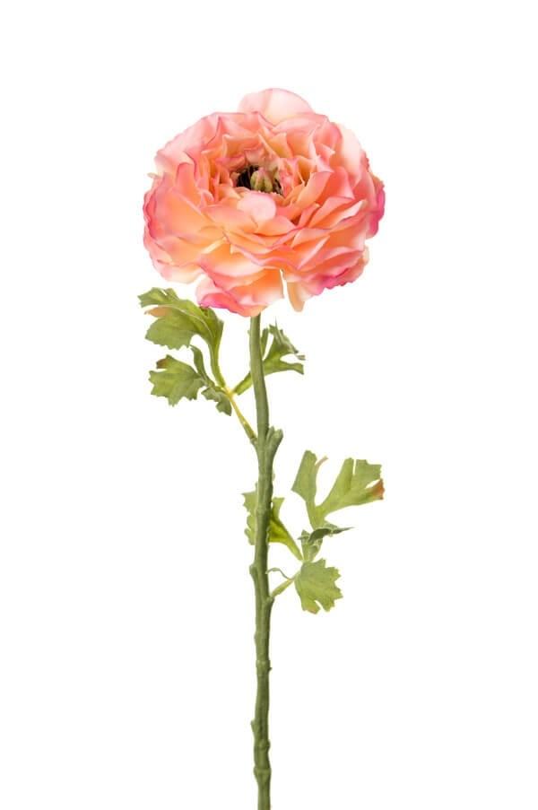 ranunkel, rosa gul, konstgjord blomma