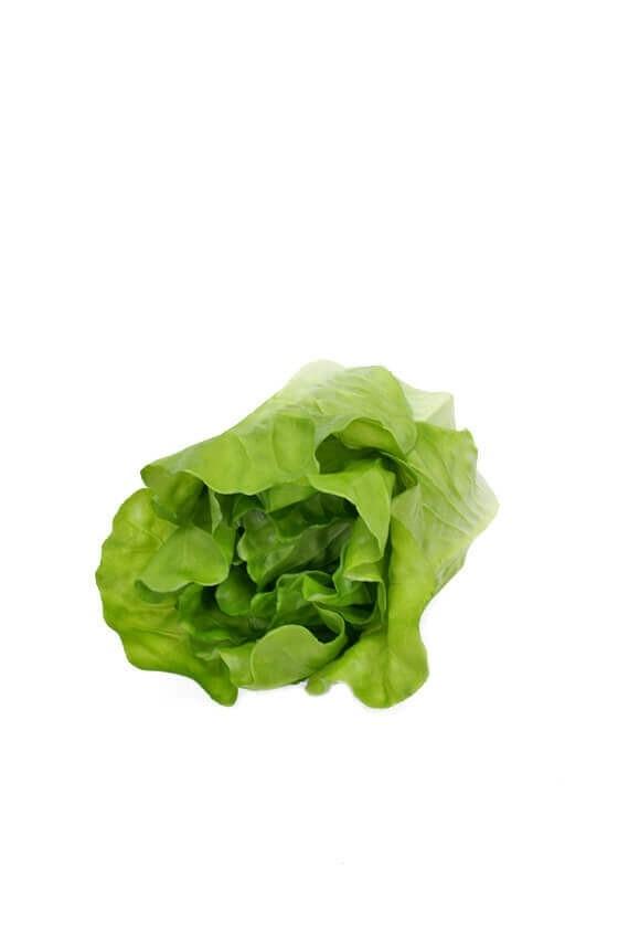 Sallad, grön, konstgjord grönsak