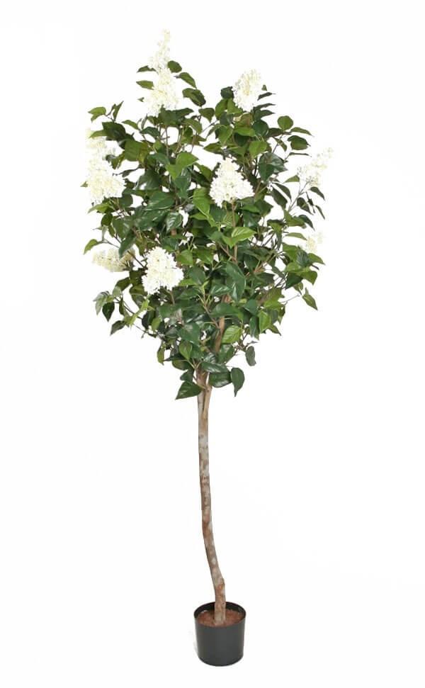 Syrénträd, vita blommor, konstgjort