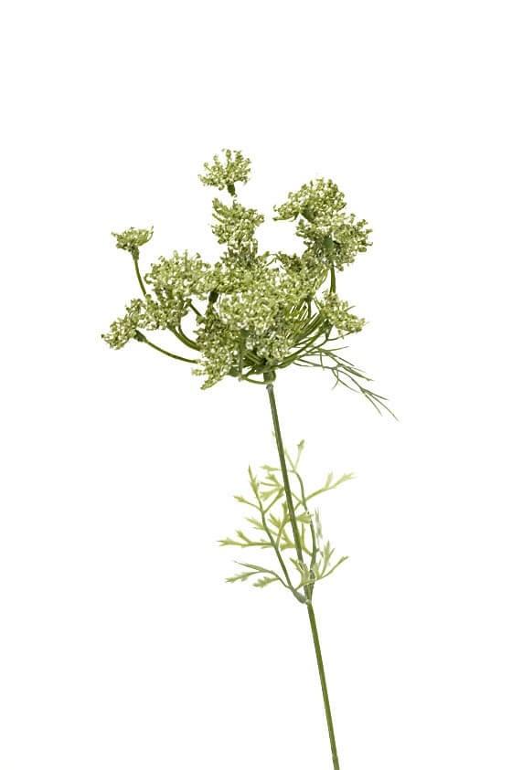 Trachelium, grön vit, konstgjord blomma