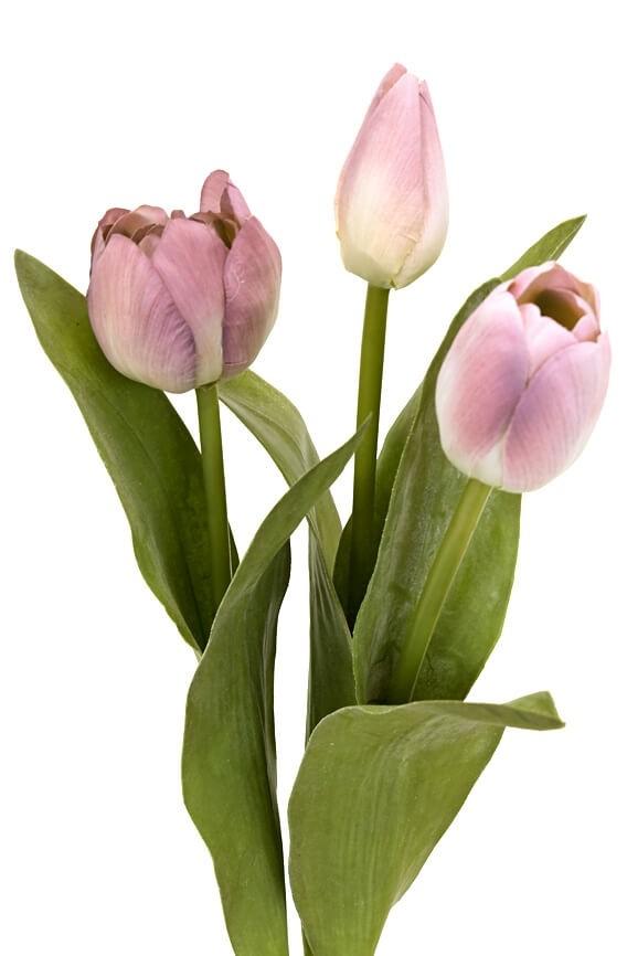 Tulpan 3-pack, ljuslila, konstgjord blomma
