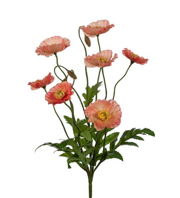 Vallmo, aprikos, konstgjord blomma