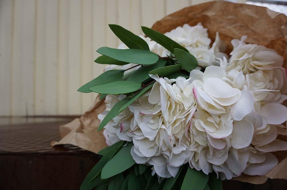Hortensia, vit, rosa, konstgjord blomma