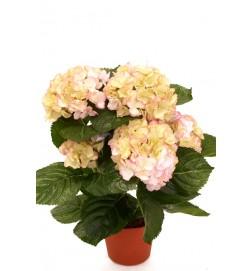 Hortensia, rosa gul, konstgjord krukväxt