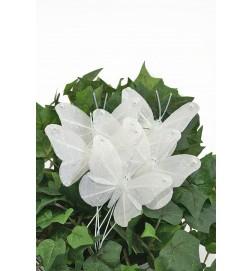 fjäril, vit med glitter 4-pack