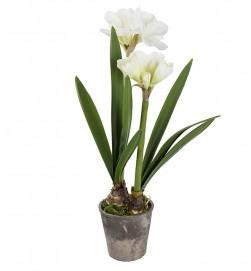 Amaryllis i kruka, vit, konstgjord