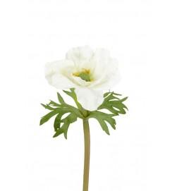 Anemon, vit, konstgjord blomma