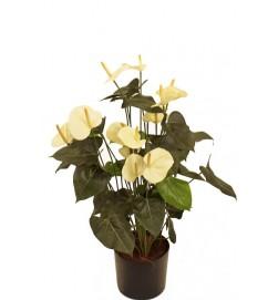 Anthurium cream, konstgjord