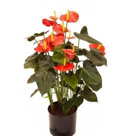 Anthurium, röd, konstgjord krukväxt