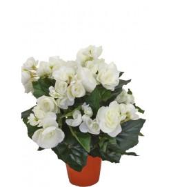Begonia, vit, konstgjord blomma