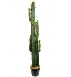 Cactus pillar, konstgjord