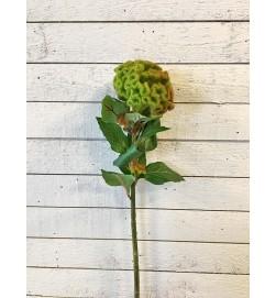 Celosia kvist, konstgjord blomma