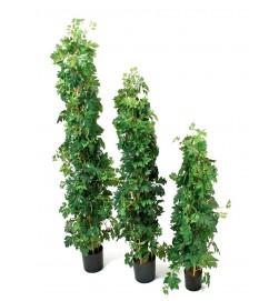 Cissus på stam, konstgjord grön krukväxt