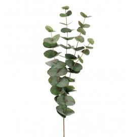 Eucalyptus, grön matt, konstgjord kvist