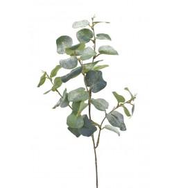 Eucalyptus med is, konstgjord kvist