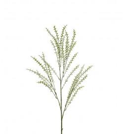 Eucalyptus småbladig, konstgjord kvist