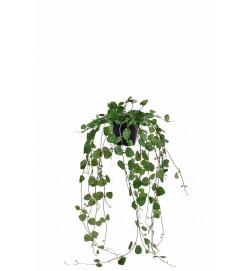 Hjärtan på tråd i kruka, vine green, konstgjord