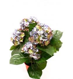 Hortensia blå grön, konstgjord krukväxt