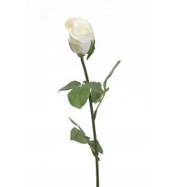 Ros, creme, vit, konstgjord blomma
