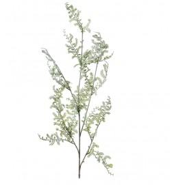 Kvist, akacia, konstgjord