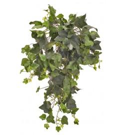 Murgröna bush, mellan, konstgjord
