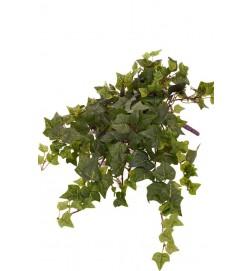 Murgröna, kort, konstgjord