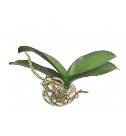 Orkidéblad, större, konstgjort