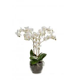Orkidé i glaskruka, konstgjord